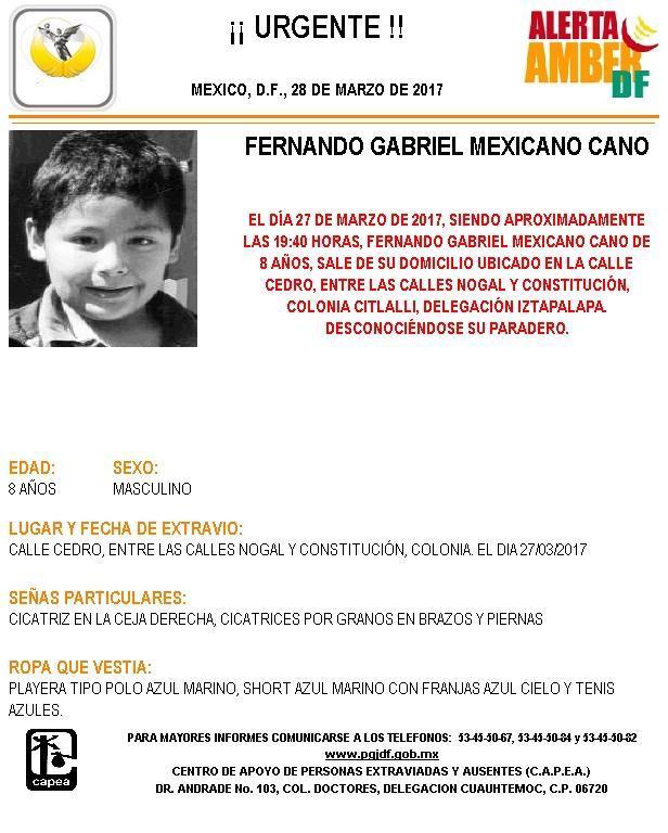 Activan Alerta Amber para localizar a Fernando Gabriel Mexicano Cano, de 8 años de edad, extraviado en Iztapalapa. (PGJCDMX)