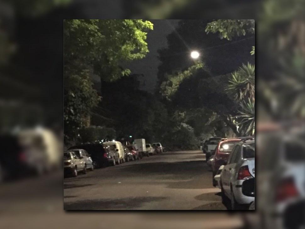 Árbol cae sobre la calle Cuernavaca de la colonia Condesa; no se reportan lesionados (Twitter @HCVaniov)