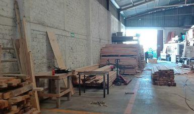 Aseguran de manera precautoria 14 metros cúbicos de madera aserrada de pino en Querétaro. (Profepa)