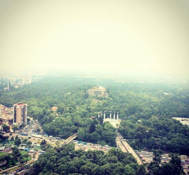 La tercera sección del Boque de Chapultepec tiene una superficie de 243 hectáreas. (Instagram: @chapultepeccdmx)