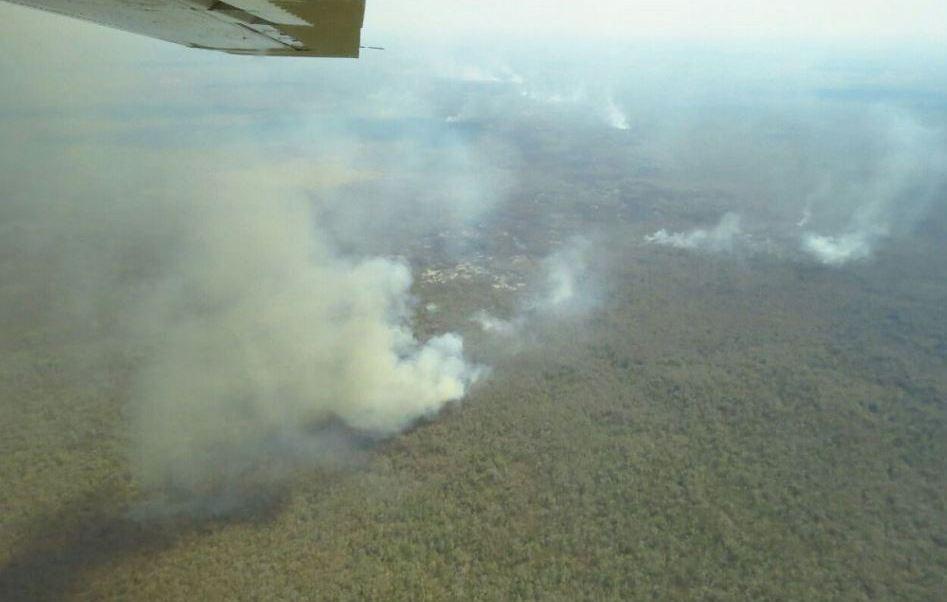 Los incendios se localizan en la llamada zona de amortiguamiento de la Reserva de la Biósfera de Calakmul (Twitter/@CONAFOR)