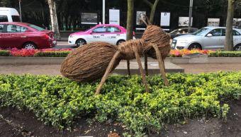 Cuarenta hormigas gigantes son exhibidas sobre la avenida Paseo de la Reforma, entre Gandhi y Grutas, como parte del primer Festival Flores y Jardines que se llevará a cabo en la Ciudad de México. (@soflop)