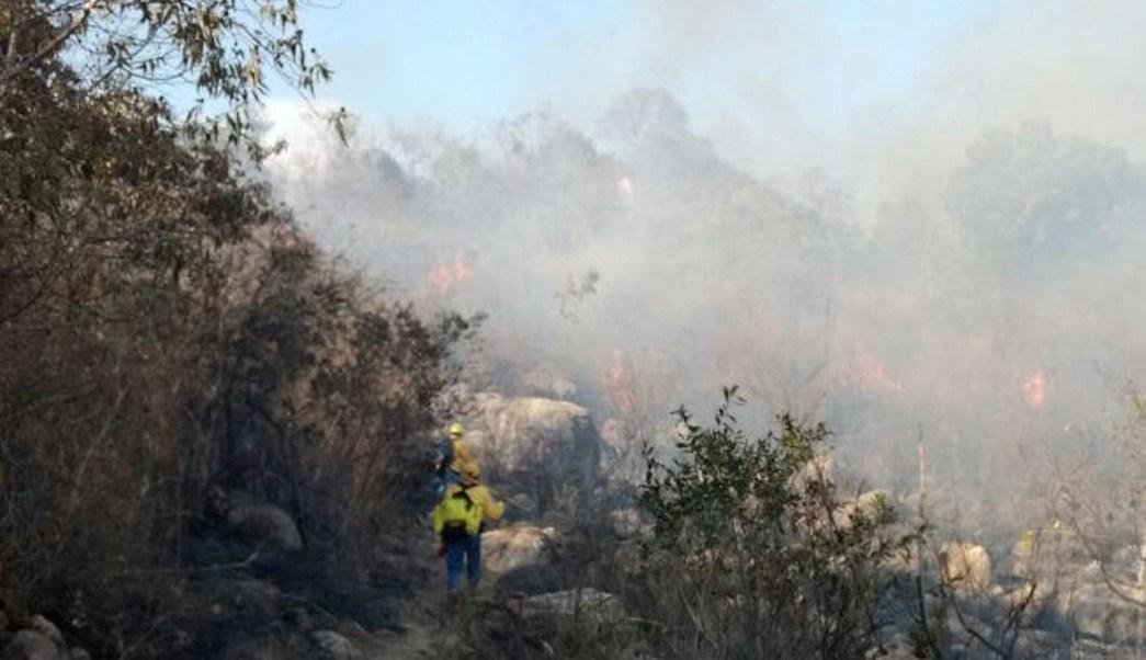 Autoridades en Acapulco atienden incendio en el Parque Nacional El Veladero; la temporada de incendios forestales en México abarca nueve meses (NTX, archivo)