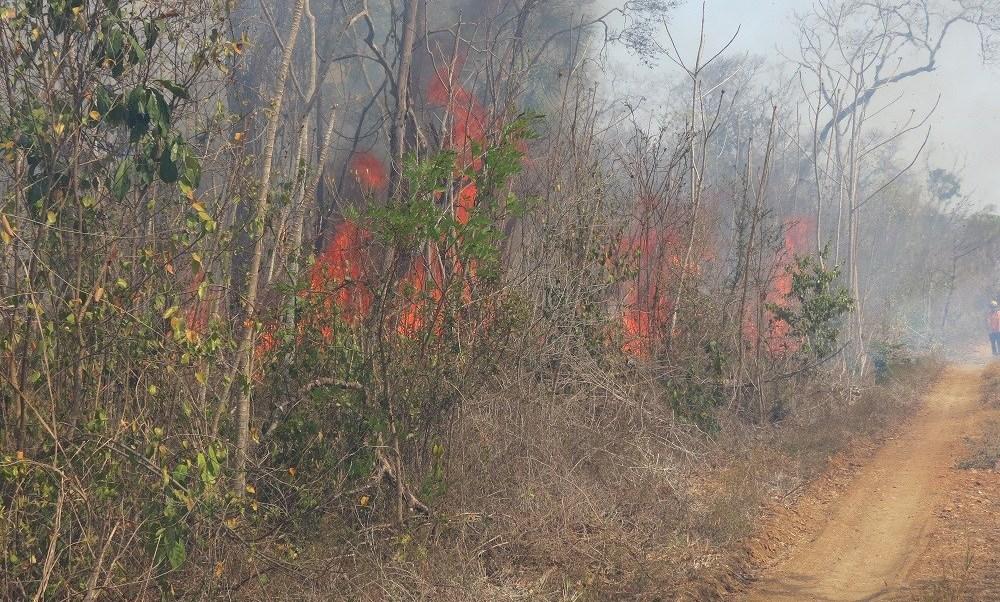 Un grupo de 82 personas trabajan para sofocar dos incendios activos en la comunidad de Chanchen y Xmabén. .