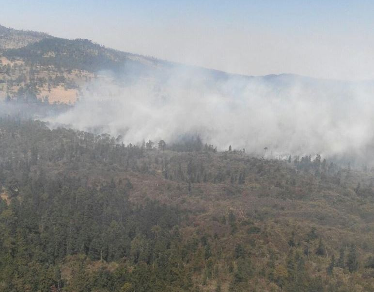 La sequía por la falta de lluvias y el viento favorecen que el fuego se extienda a zonas boscosas del norte de Morelos hasta llegar a los límites con el Estado de México. (Twitter@SSP_CDMX)