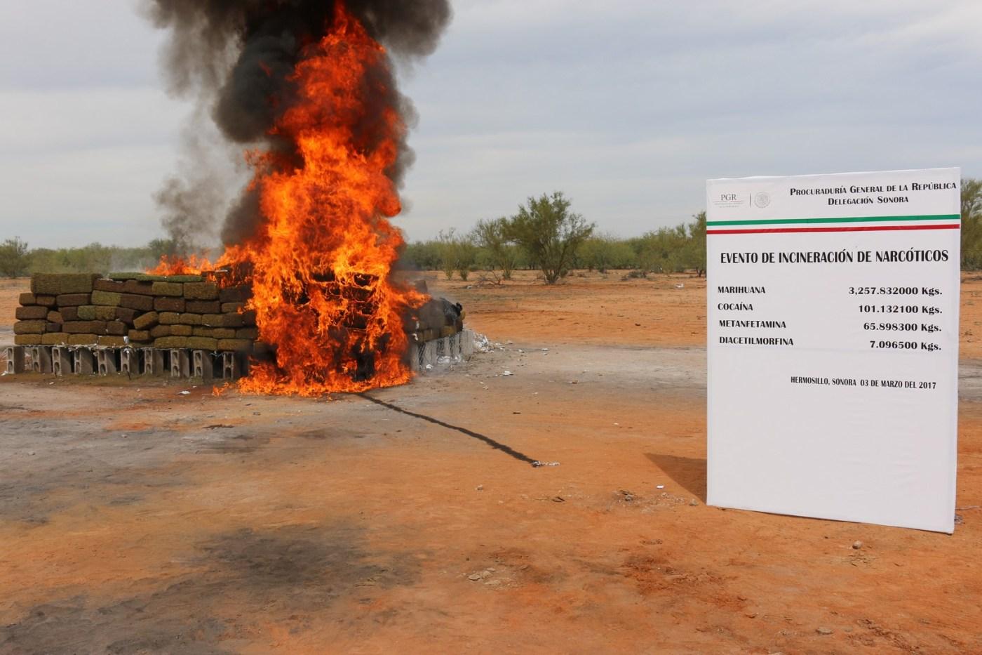 Incineran más de tres toneladas de narcóticos en Sonora. (PGR)
