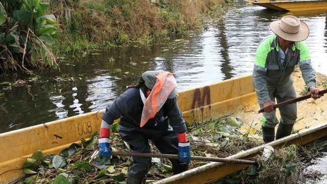 """Los desperdicios orgánicos son recolectados y llevados al Centro de Composteo """"Axolotl"""". (@DelegacionXochi)"""