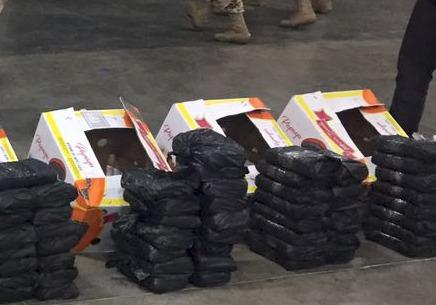 Ejército decomisa 120 kilos de droga en cargamento de papayas en Sonora