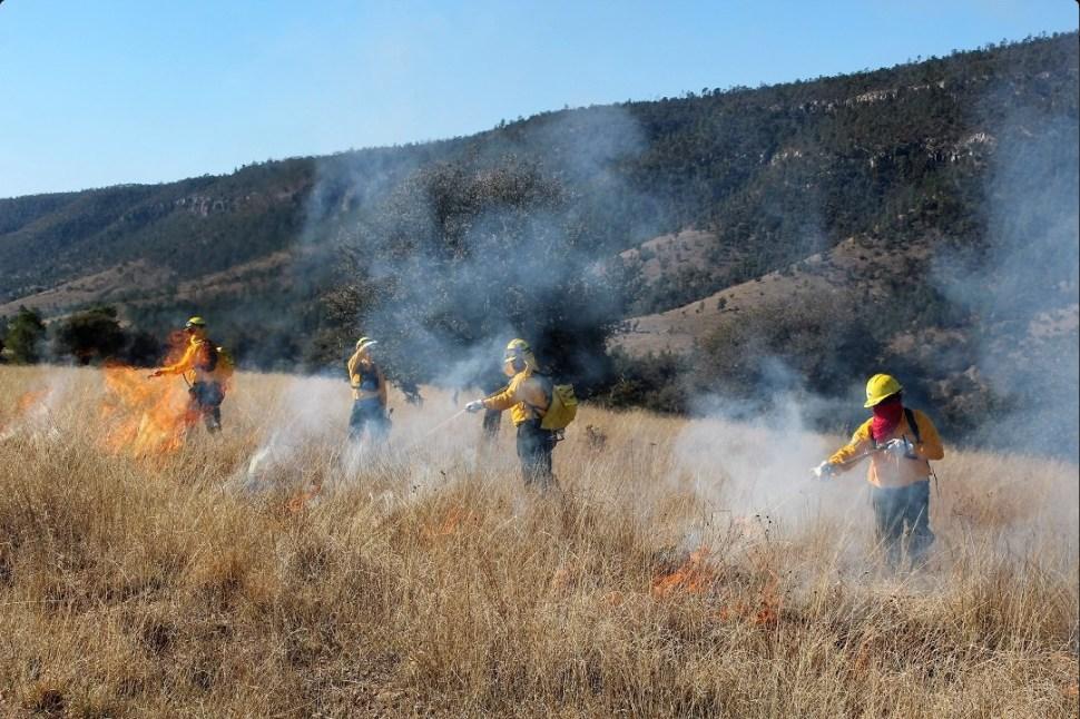 Realizan quema controlada en bosques de Durango; miles de incendios han afectado más de 26 mil hectáreas en México en el 2017( Twitter @CONAFOR)