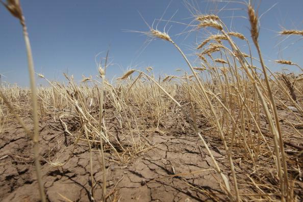 Para conseguir un poco de agua pobladores y autoridades excavan pozas en el margen y el lecho de los ríos secos (GettyImages/Archivo)