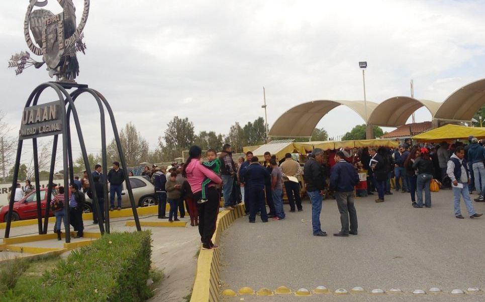 La Universidad Autónoma Agraria Antonio Narro, cuenta con 916 trabajadores administrativos (Twitter/@marianamejialoz)