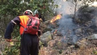 Conafort ha combatido este año 40 incendios forestales en Colima, 13 más que el año anterior. (Notimex, archivo)