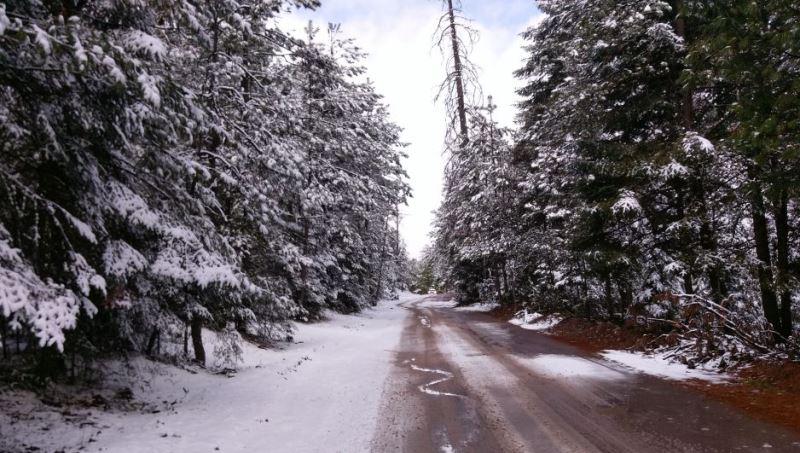 Frente frío provoca nevadas en 15 municipios de la Sierra de Chihuahua