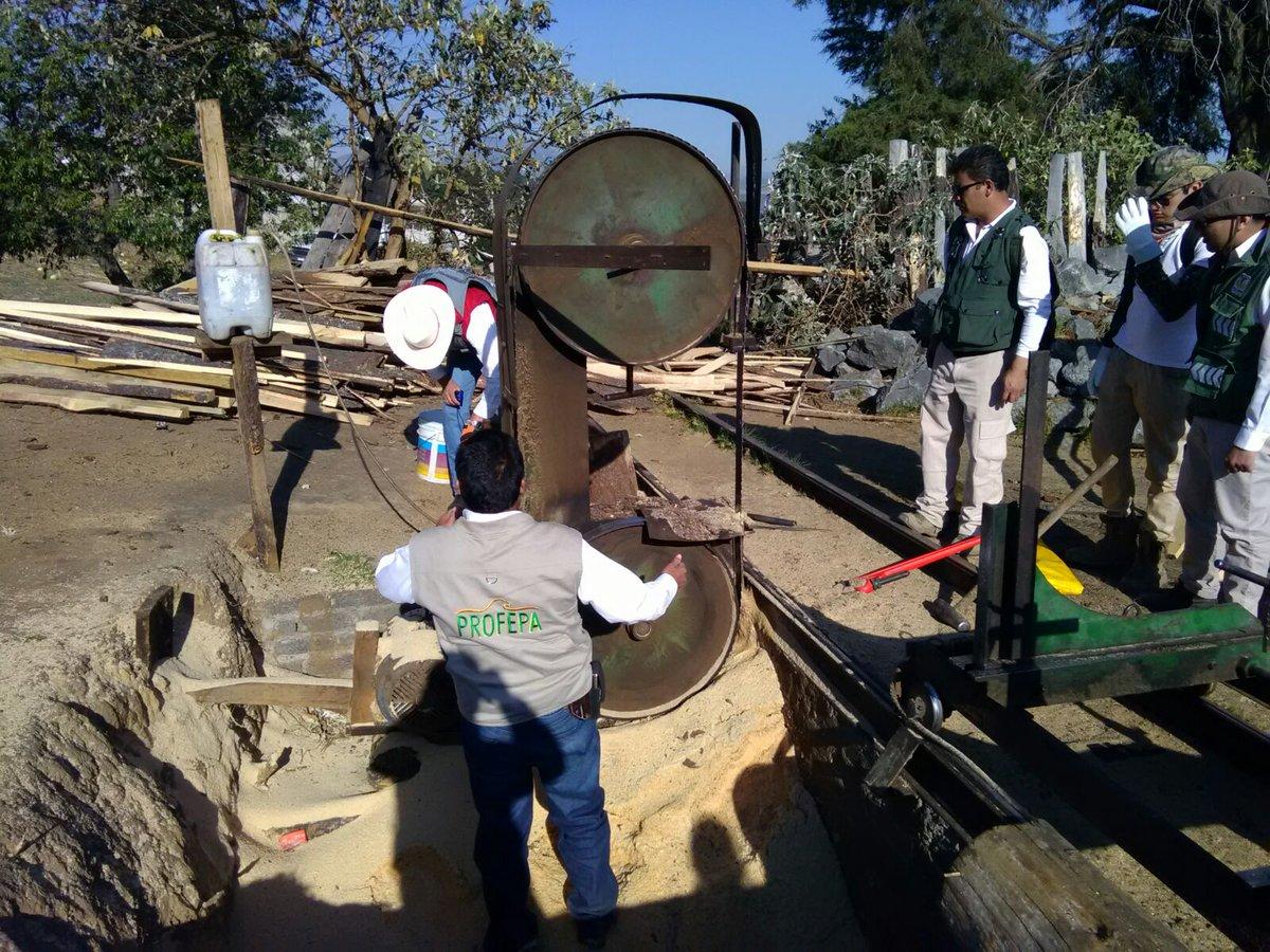 Desmantelan aserraderos en Milpa Alta. (Twitter @PROFEPA_Mx)