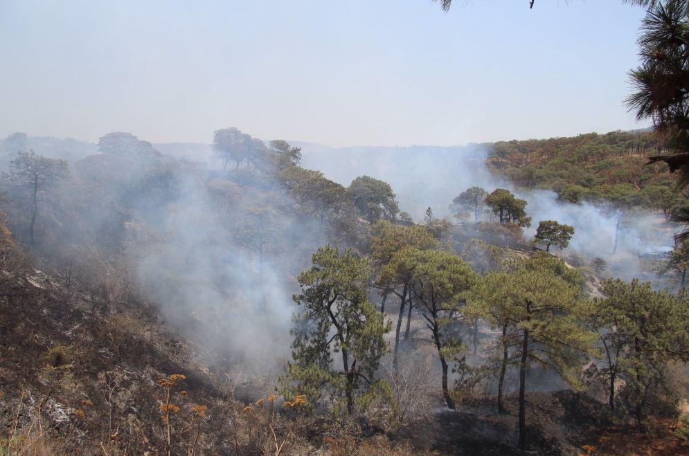 Controlan incendio en cerro de Bugambilias