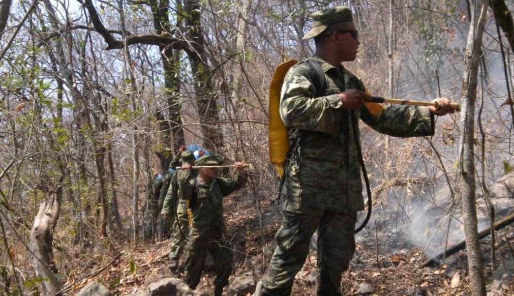 En el incendio de Frontera Comalapa participan cerca de 80 brigadistas. (Twiter: @pcivilchiapas)