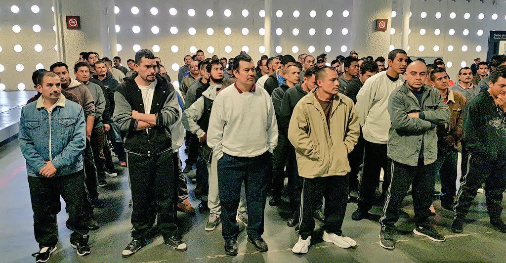 Cada semana, lunes, martes y jueves llega al Aeropuerto Internacional de la Ciudad de México (AICM) un avión con repatriados mexicanos. (Twitter @TrabajoCDMX)