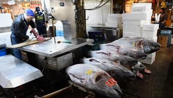 La OMC dio la razón a México en una disputa por el etiquetado del atún. (Getty Images)
