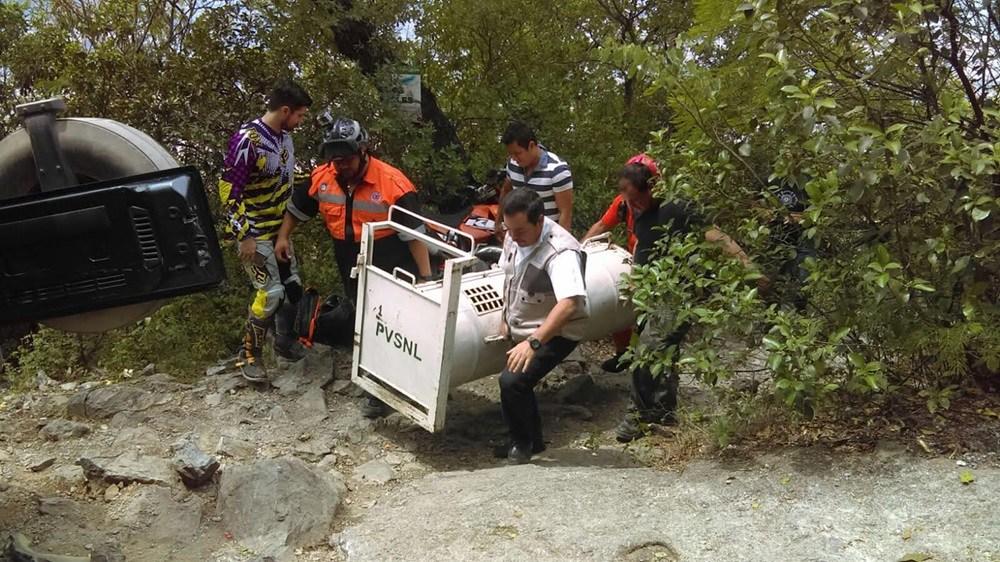 Personal de Profepa reubica a un oso negro caputado en el Cerro de la Silla, en Nuevo León (Profepa)