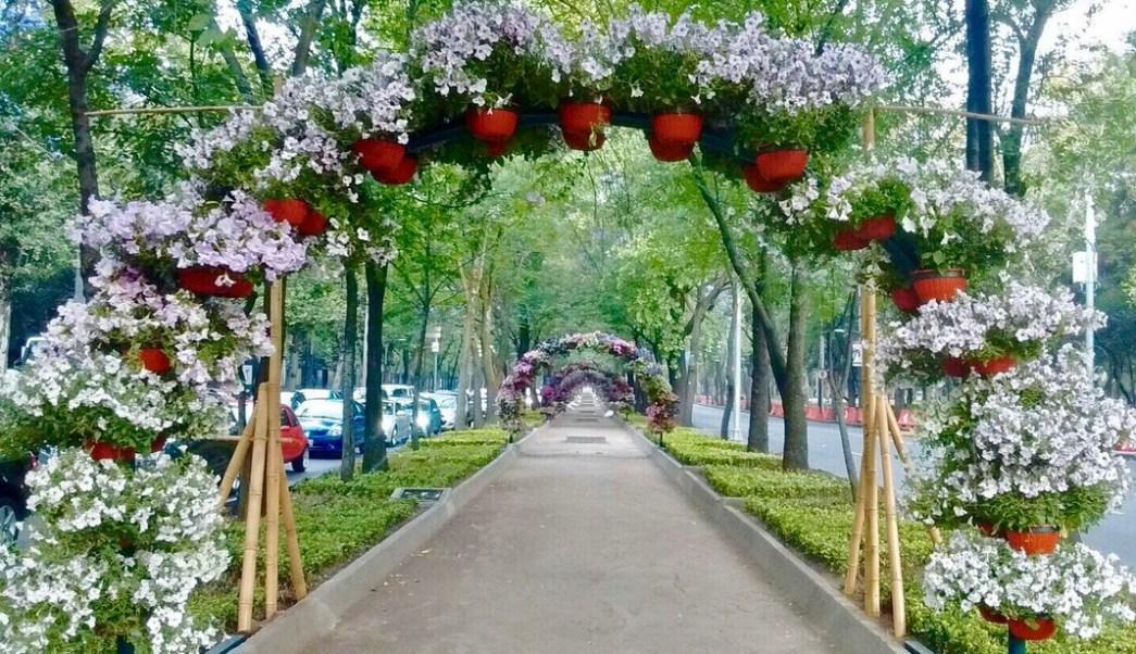 Primer festival de flores y jardines llega a reforma for Arcos para jardin