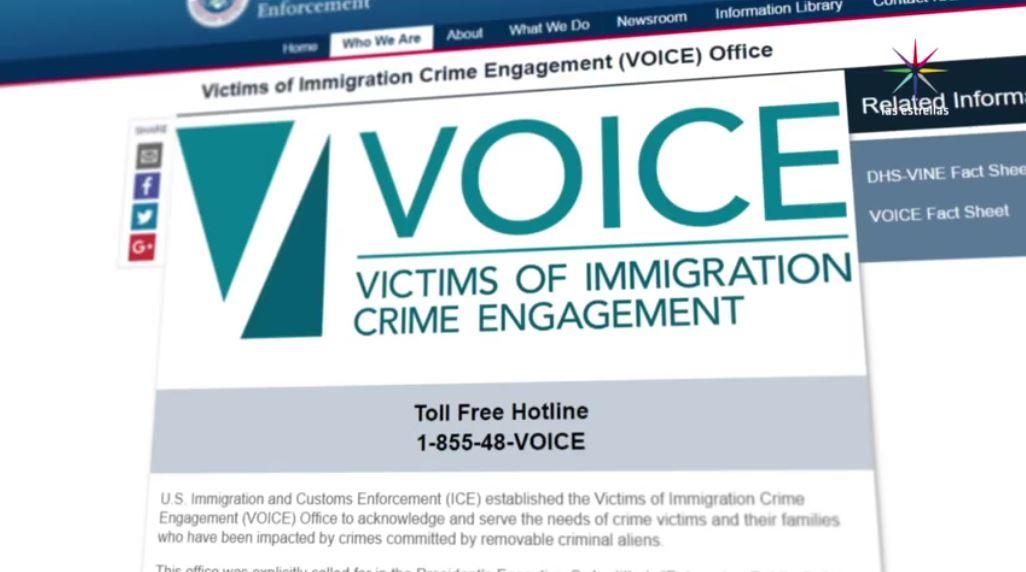 Trump, migrantes, indocumentados, aliens, delitos, voice