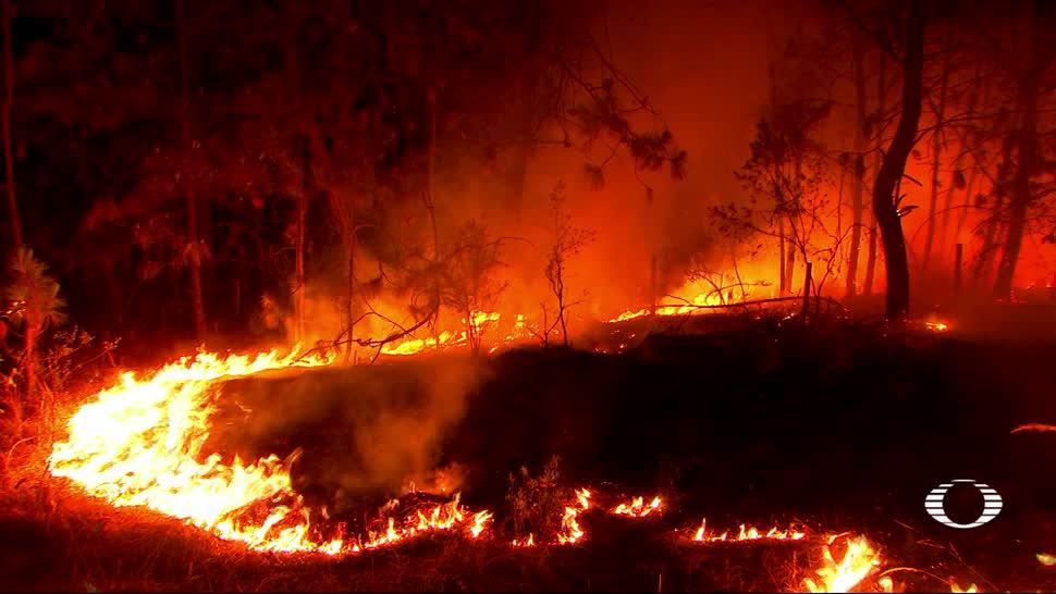 noticias, televisa news, Edomex, Yucatan, victimas, incendios forestales