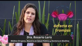 doctora, Rosario Laris, embarazo, salud