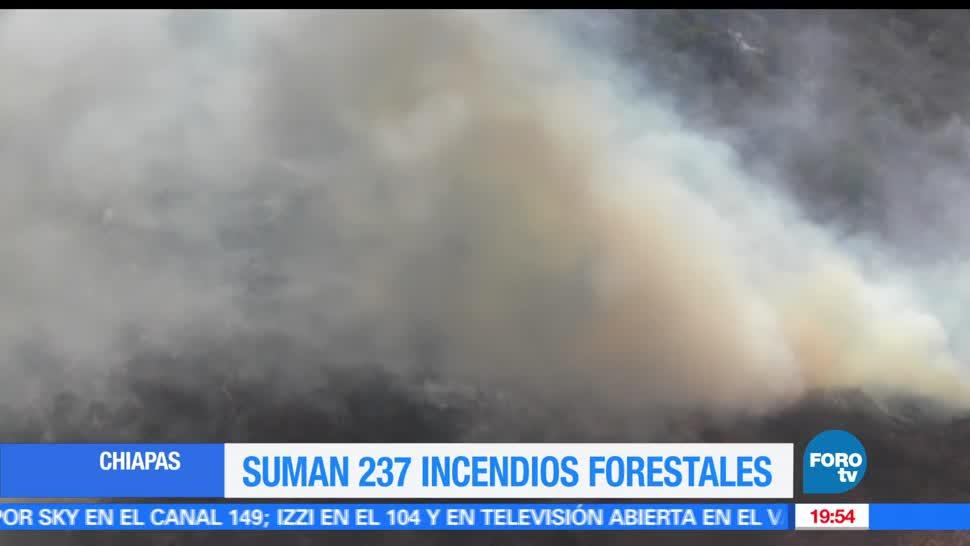 Noticias, forotv, Suman, 237 incendios, forestales, Chiapas