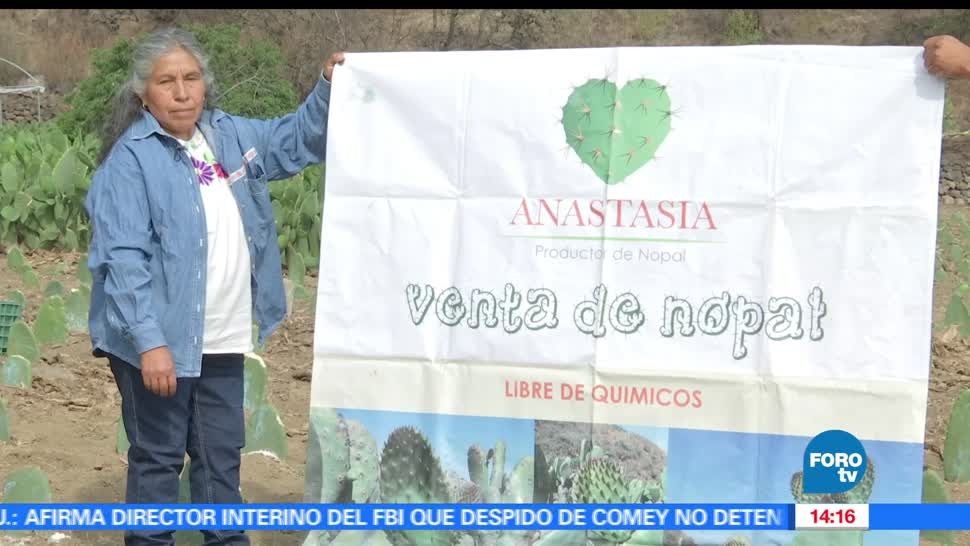 noticias, forotv, Campesina, Milpa Alta, produce, nopal organico