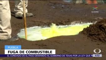 Detectan toma clandestina, ducto de Pemex, San Matías Tlalancaleca, combustible