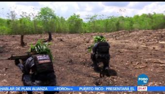 noticias, forotv, Gendarmeria, protegera, reserva de la biosfera, Calakmul