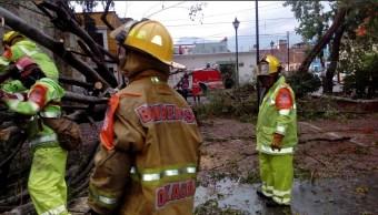 Afectaciones, lluvias, Oaxaca, daños por lluvias, clima, tormentas