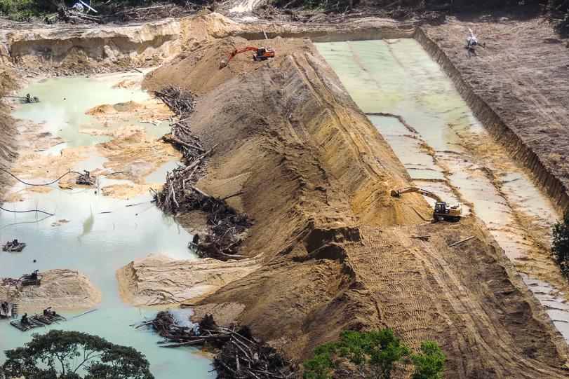 Brasil, Amazonas, parque, agricultura, medio ambiente, selva,