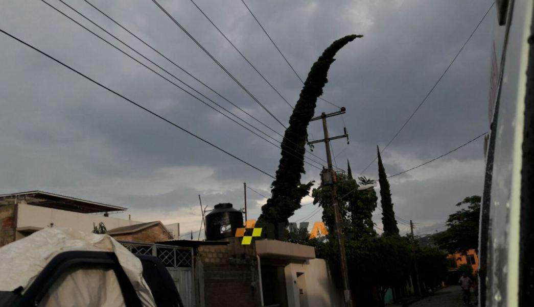 Los sentenciados robaron cables en la delegación Gustavo A. Madero (Twitter @RIVAC_OAX)