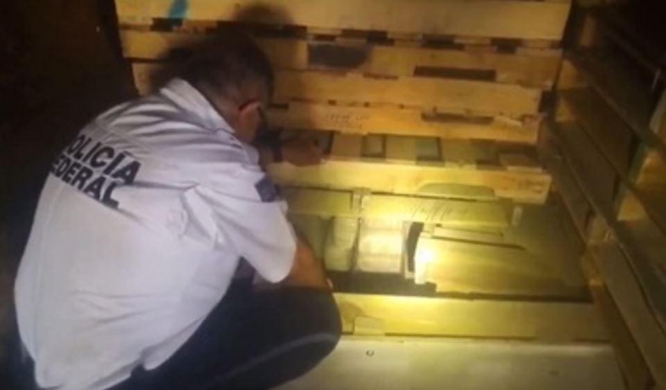 PF asegura más de una tonelada de aparente marihuana en Sonora