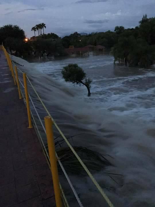Desborda arroyo en ejido Mamulique de Nuevo León