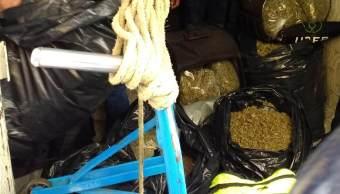 marihuana, droga, marihuana decomisada en Tepito, uber eats,