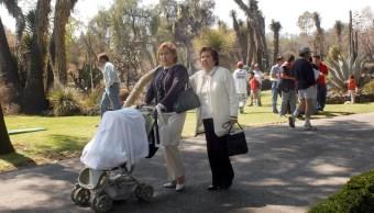 Existen en México tres grupos de familias con 11 variantes. (UNAM)