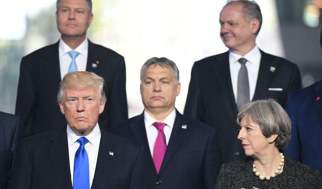 Donald Trump, empujón, OTAN, Montenegro
