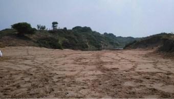 Humedales en Coatzacoalcos son afectados por la mancha urbana
