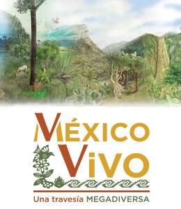México Vivo, una travesía megadiversa