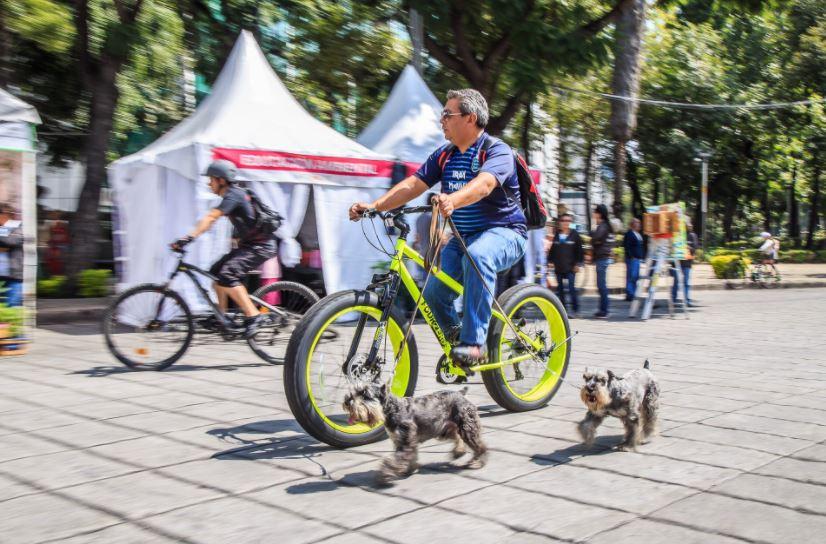 Capitalinos realizan ejercicio y pasean en bicicleta a pesar de contingencia ambiental