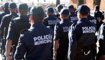 Policias, guerrero, zihuatanejo, cirmen organizado, delitos, pruebas