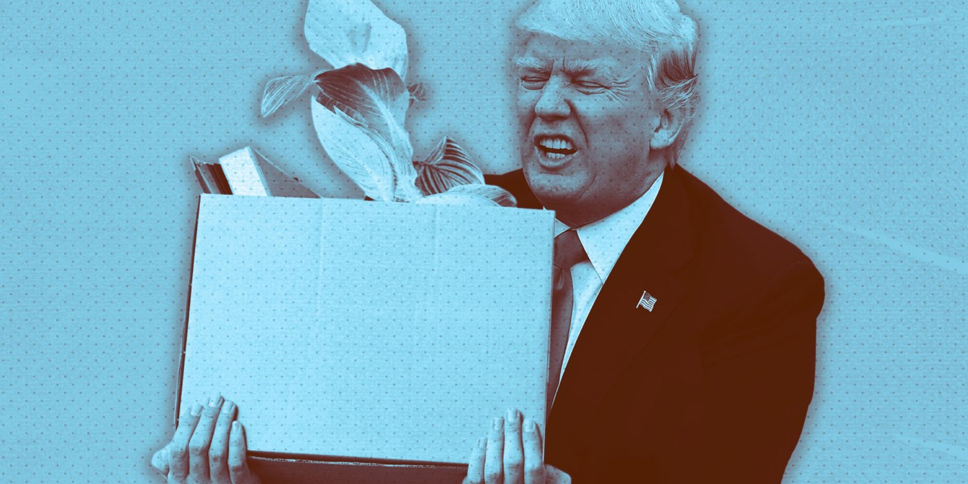 Impeachment Donald Trump Pueden despedir presidente Estados Unidos