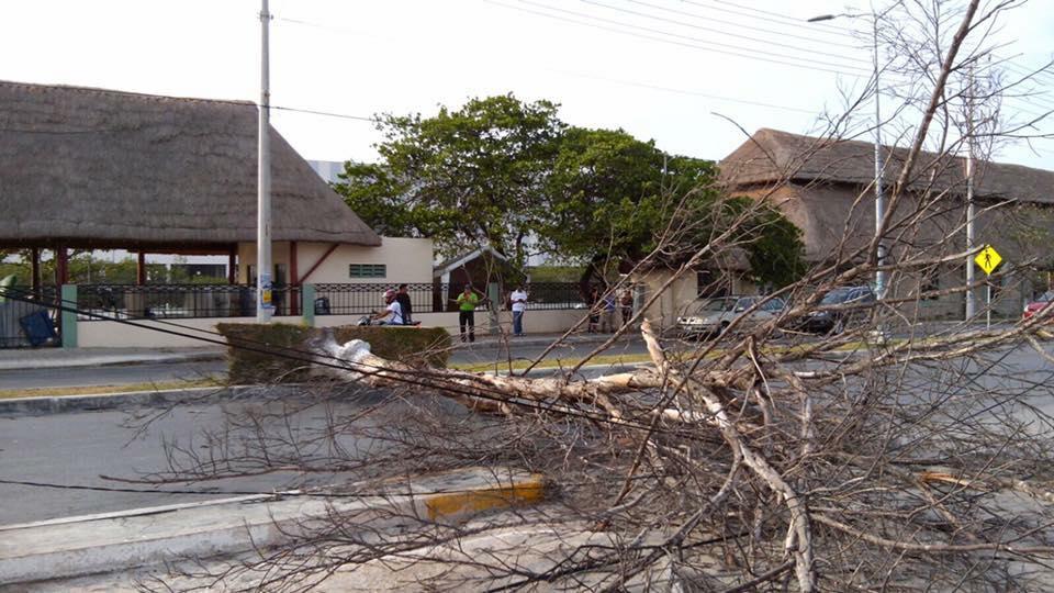 Clima, turbonada, Campeche, champoton, ciudad del Carmen, viento