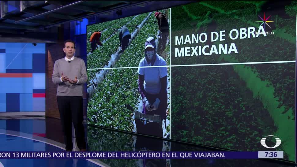 Mexicanos indocumentados, EU, ciudadano estadounidense, escombrar estiércol, caballerizas