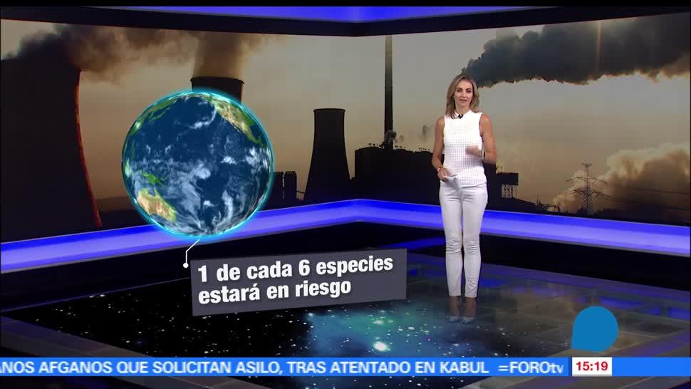 noticias, forotv, El impacto, salida de EU, Acuerdo de París, cambio climático
