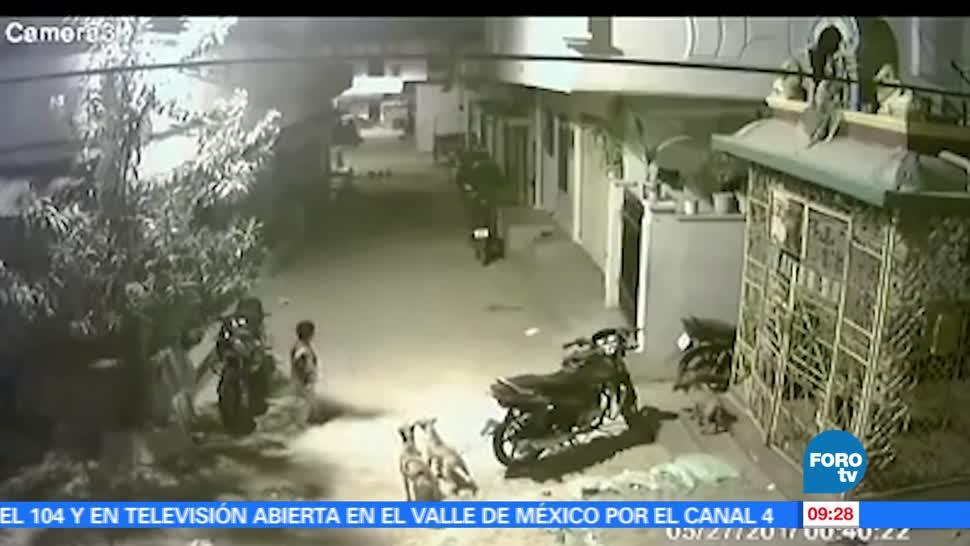 #NotasCuriosasdeME, Niño enfrenta, perros callejeros, rodean