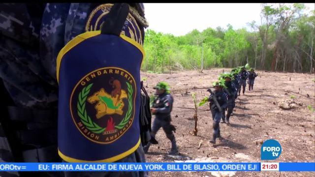 noticias, forotv, Éxitos, Gendarmería, Ambiental, México