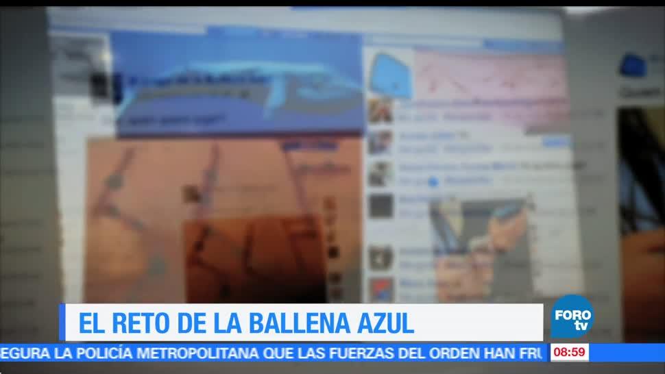 Ximena Cervantes, reportaje, reto, ballena azul